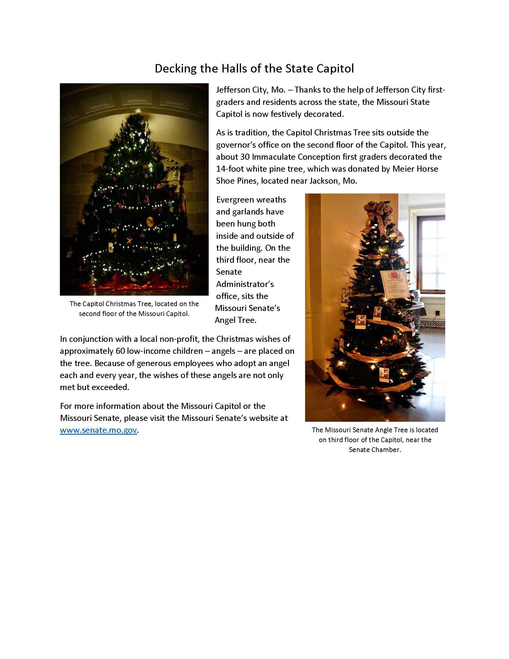 Tree Story Copy